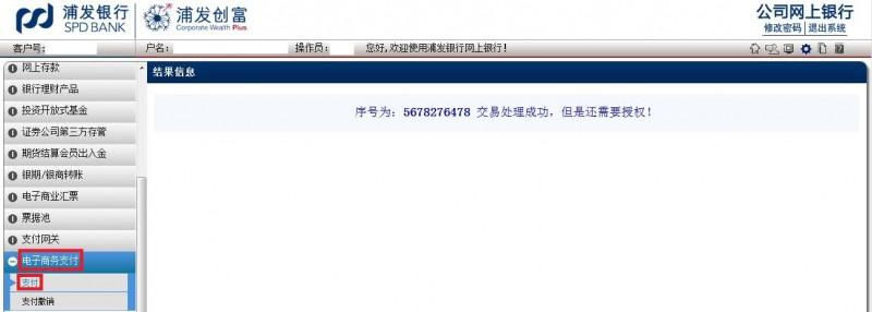 输入usbkey密码后进入到浦发银行网上银行页面